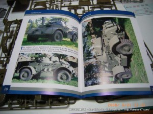 2008_06_21_staghound 005