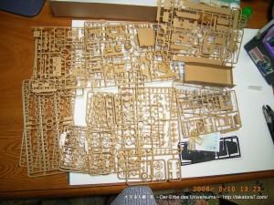 2008_08_10_brummbar 001