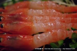 2010_08_15-23_hokkaido 418