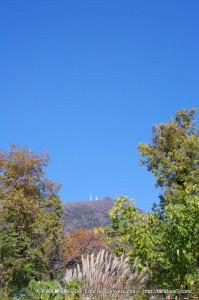 2012_11_25_tsukuba-001