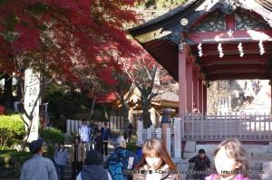 2012_11_25_tsukuba-030