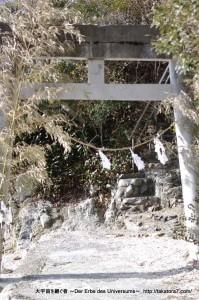 2013_01_26_inohanako-100