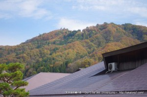 2014_11_08_yokoya-038